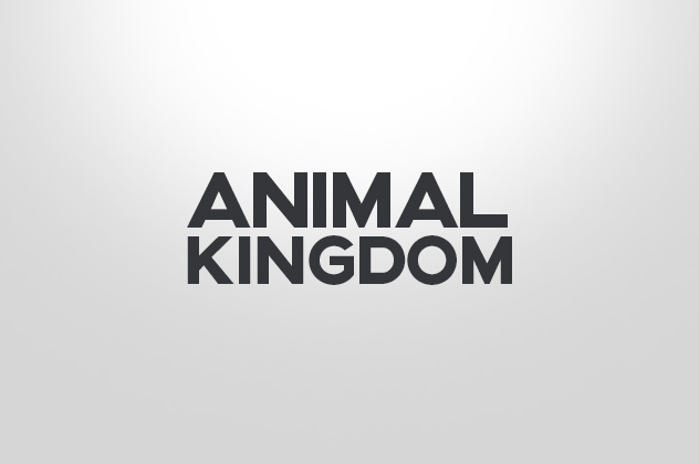Thumb_AnimalKingdom_-316x210@2x